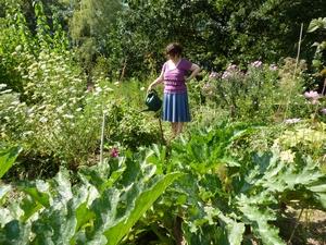 Garteln im LORA-Garten